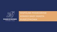 wspólne posiedzenie komisji_rada_miasta.png